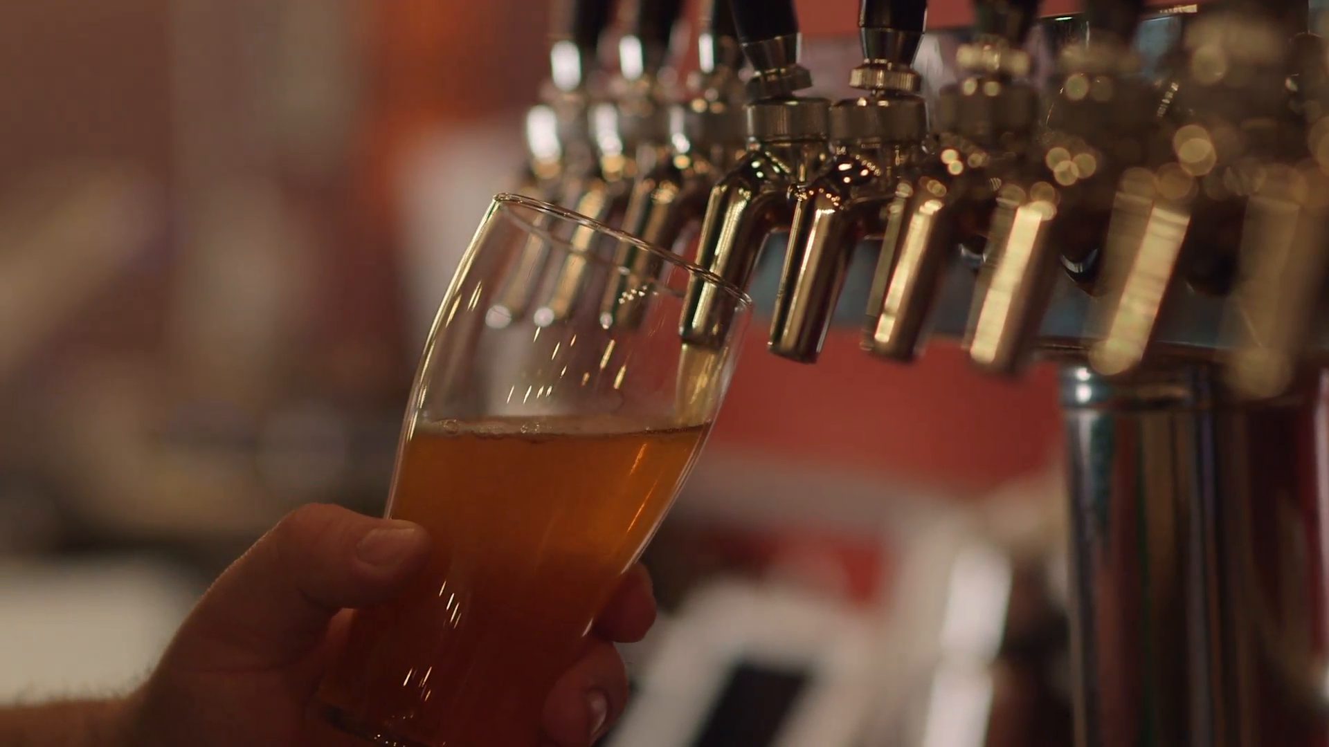 bartender-pouring-craft-beer-from-tap-into-pint-glass-at-restaurant-bar-brewery_v1w53z0tx__F0006